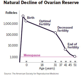 biological clock ovary egg reserves