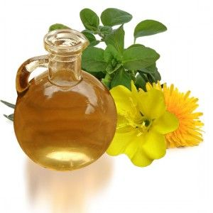 evening primrose oil fertility