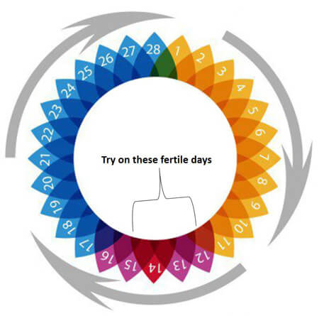 fertile day try to conceive