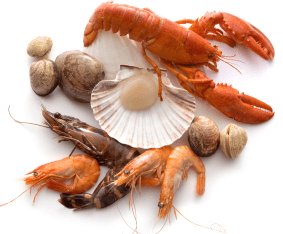 shellfish for fertility